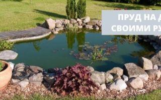 Как сделать пруд своими руками: пошаговая инструкция и фото прудов на участке