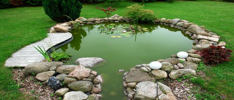 Маленький пруд