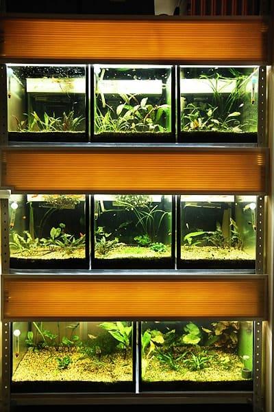 стеллаж для аквариума