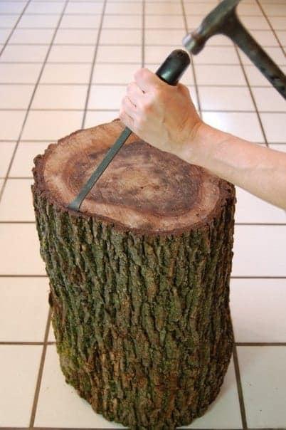 первый шаг удалем кору дерева